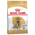 Royal Canin Setter Adult 12kg