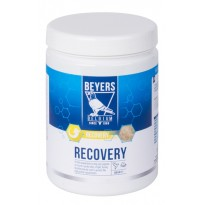 Beyers Plus Recovery 600gr