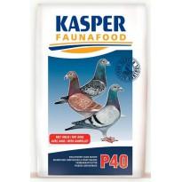 P40 Krachtvoer voor duiven 20kg