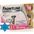 Frontline Hond Spot On L 4 pipet